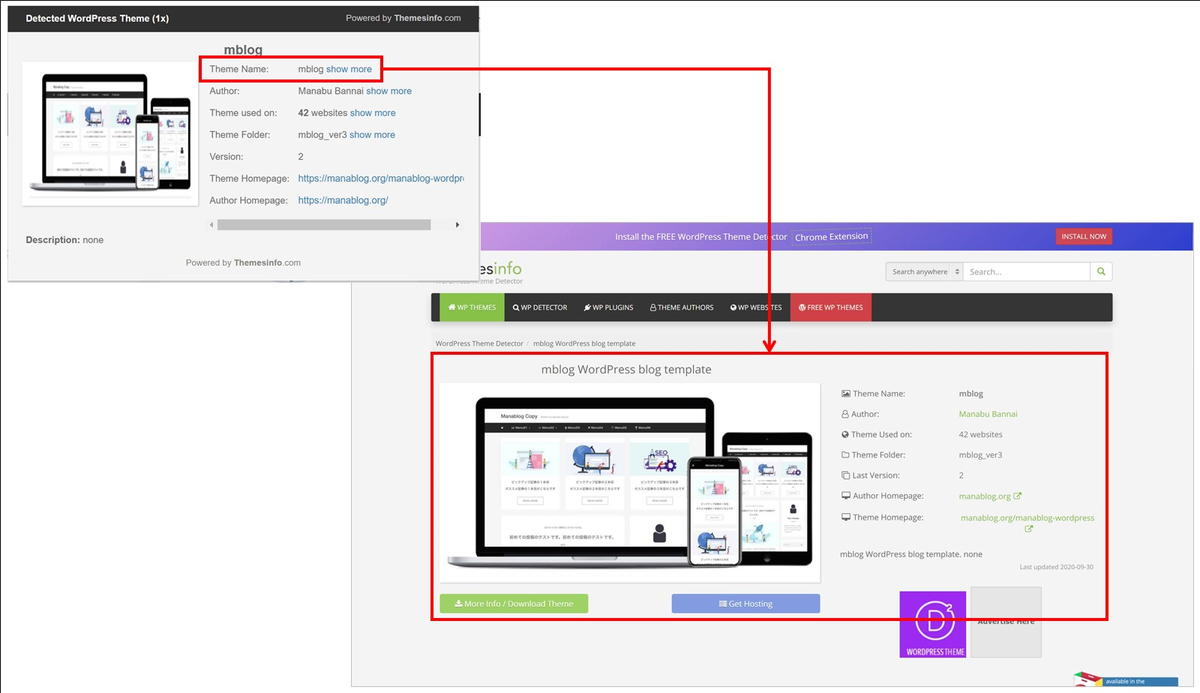 WordPress Theme Detector and Plugins Detectorのテーマ表示